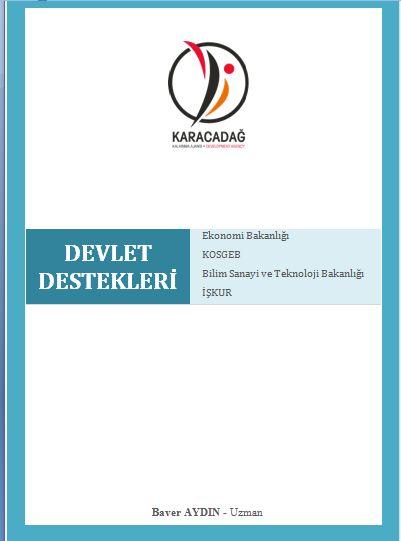 Devlet Destekleri 2013