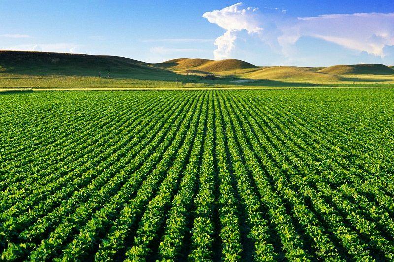 2017 Yılı Tarımsal Üretimin Desteklenmesi Programı Başvuruları Başladı