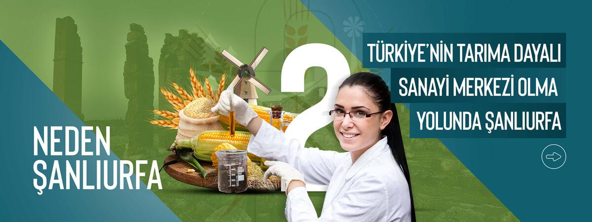 Türkiye'nin Tarıma Dayalı Sanayi Merkezi Olma Yolunda Şanlıurfa