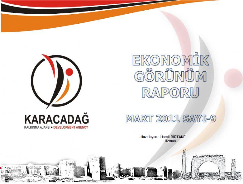 Türkiye ve TRC2 Bölgesi Ekonomik Görünüm Raporu 2011 Mart Sayısı Yayınlanmıştır